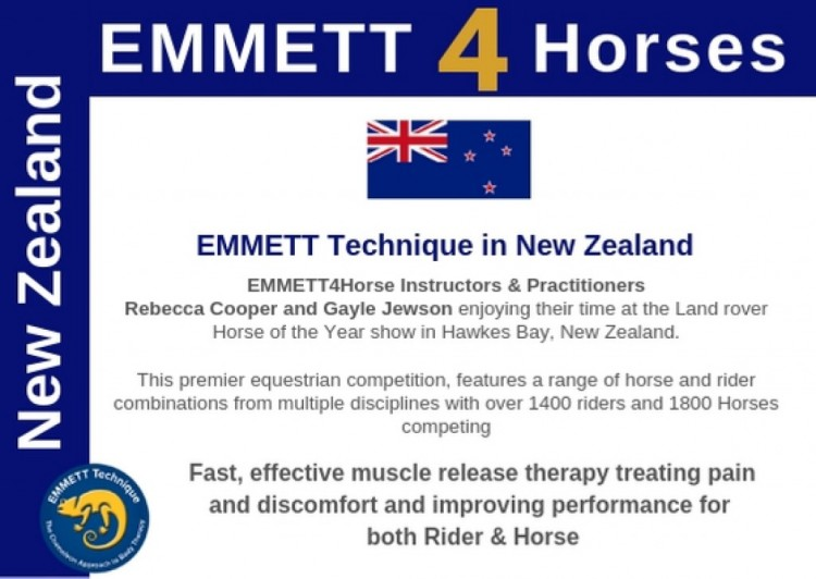 EMMETT Technique in New Zealand